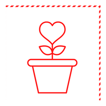 Start a Community Garden