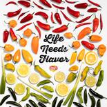 Lay's-Flavorite-Things-TEXT.jpg