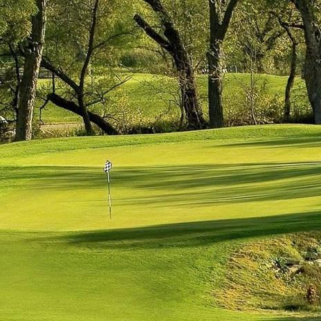 TCAF State Golf Tournament