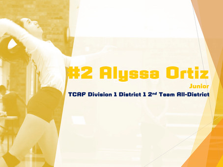 Ortiz Awarded 2nd Team All-District Honors