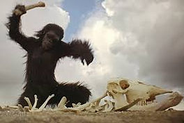 The ape from Stanley Kubrick's 2001