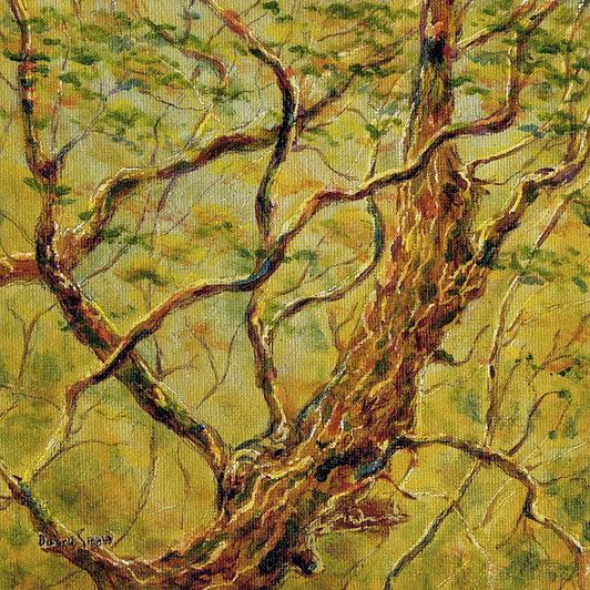 Fine art oil painting based on the Oak poem by Bernard Shaw. Layers of fine oil glazes create a decorative image of the oak tree in woodland near Whitby