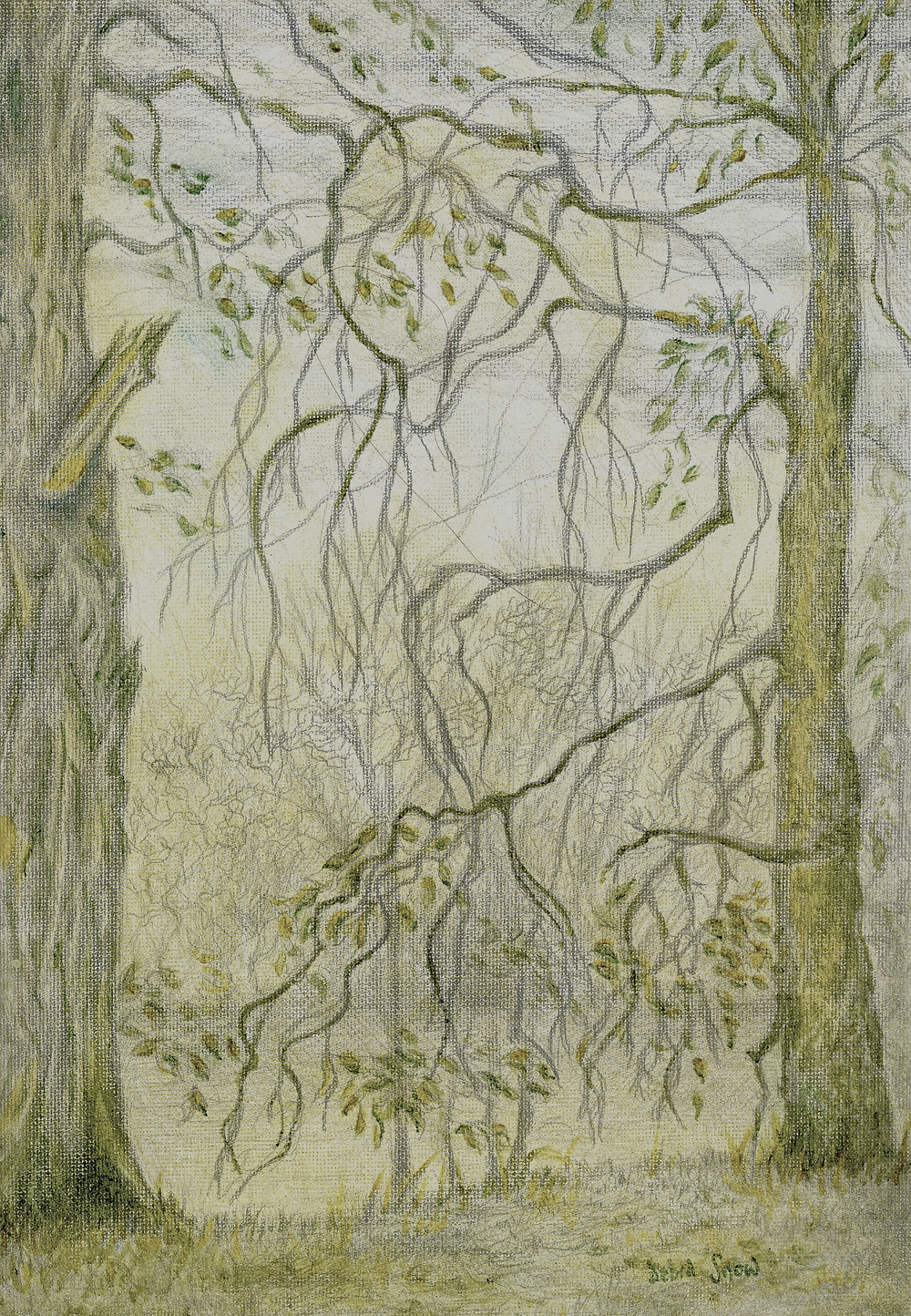 Ethereal landscape in silverpoint and oil
