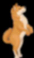 23516983__2_-removebg-preview__3_-remove