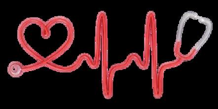 """alt="""" about Shiba Inu Health"""""""