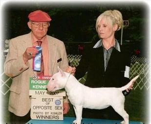 trish showing a dog