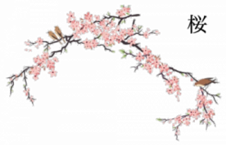japanese-flower-png-7.png