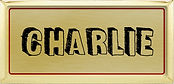 charlie tag.jpg