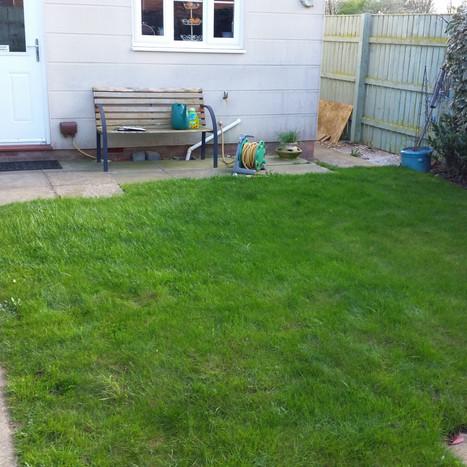 Garden design before
