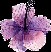 fleur 1.png