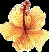 fleur 4.png