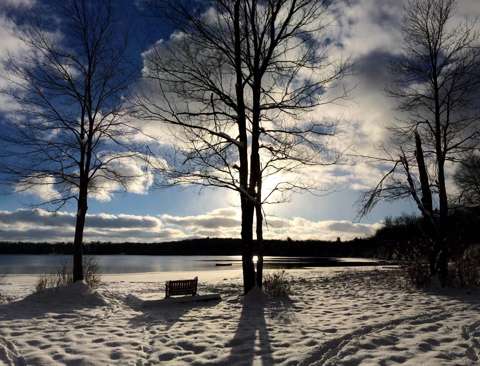 Lakeside in Winter