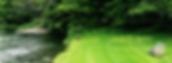Screen Shot 2020-01-24 at 13.54.31.png