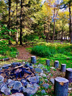 Firepit view of private path to lake