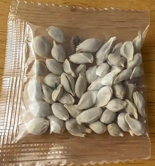Beware of mysterious seed packages from China