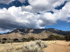Landscape and the Pino Trail