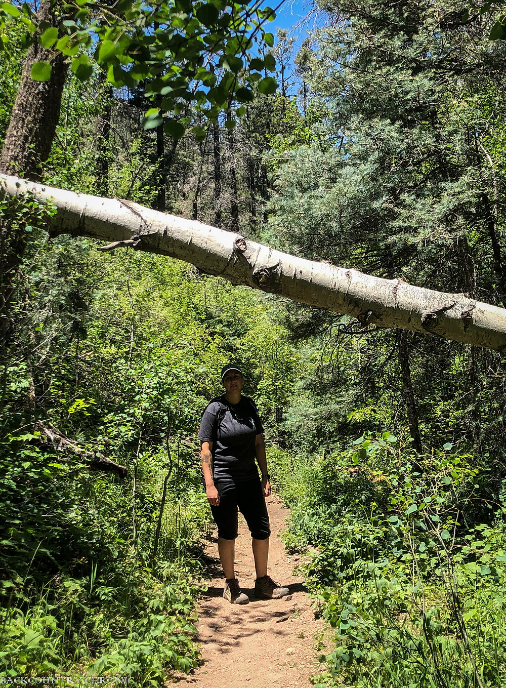 hiking improves overall health
