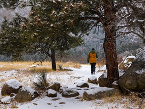 Cheyenne Mountain State Park: Hiking in the Company of Mule Deer