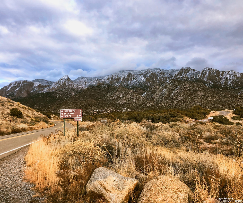 Cibola National Forest with a view of the Sandia Mountains