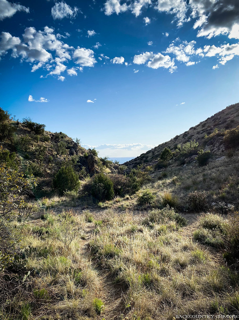 A hiking trail in the Albuquerque foothills