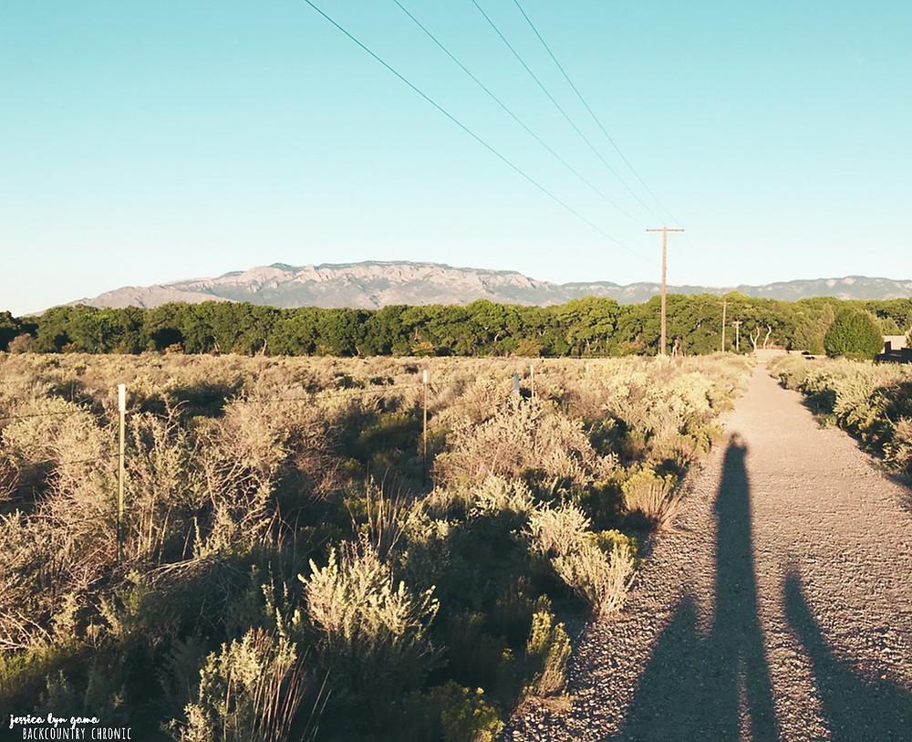 Walking trail in Albuquerque with a view of the Sandia Mountains
