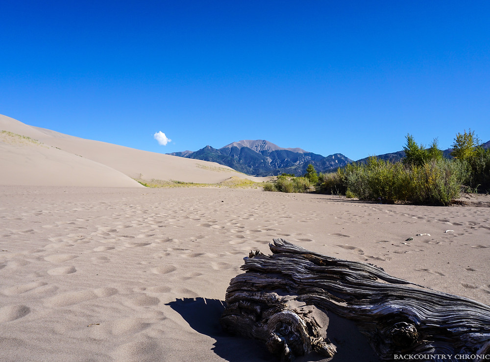 Base of sand dunes in Great Sand Dunes National Park