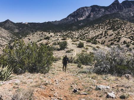 Walking the Sandia Mountain Wilderness