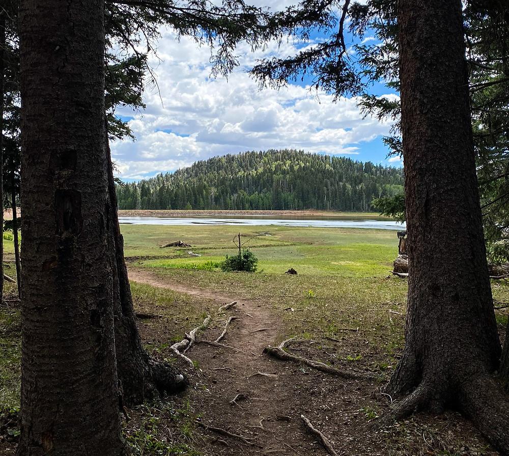 San Pedro Parks Wilderness Area trails