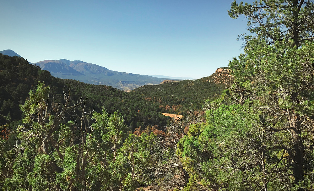 View of McElmo Canyon from Sand Canyon Pueblo ruins