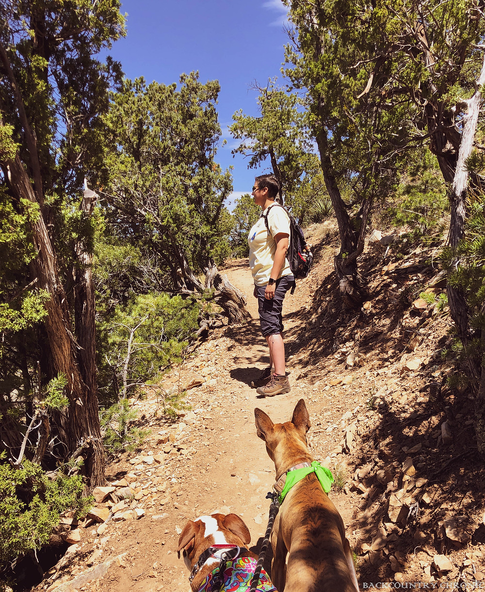 Ankylosing Spondylitis on the trail