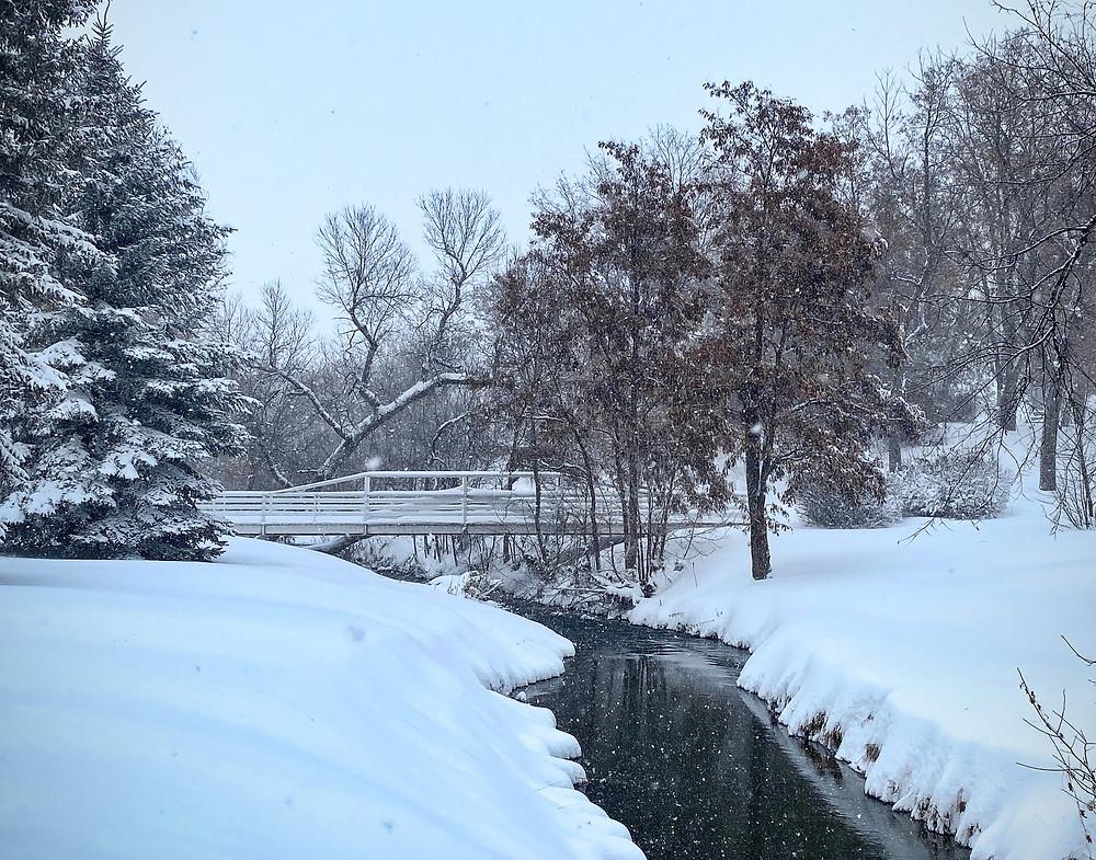 Winter weather scene along river