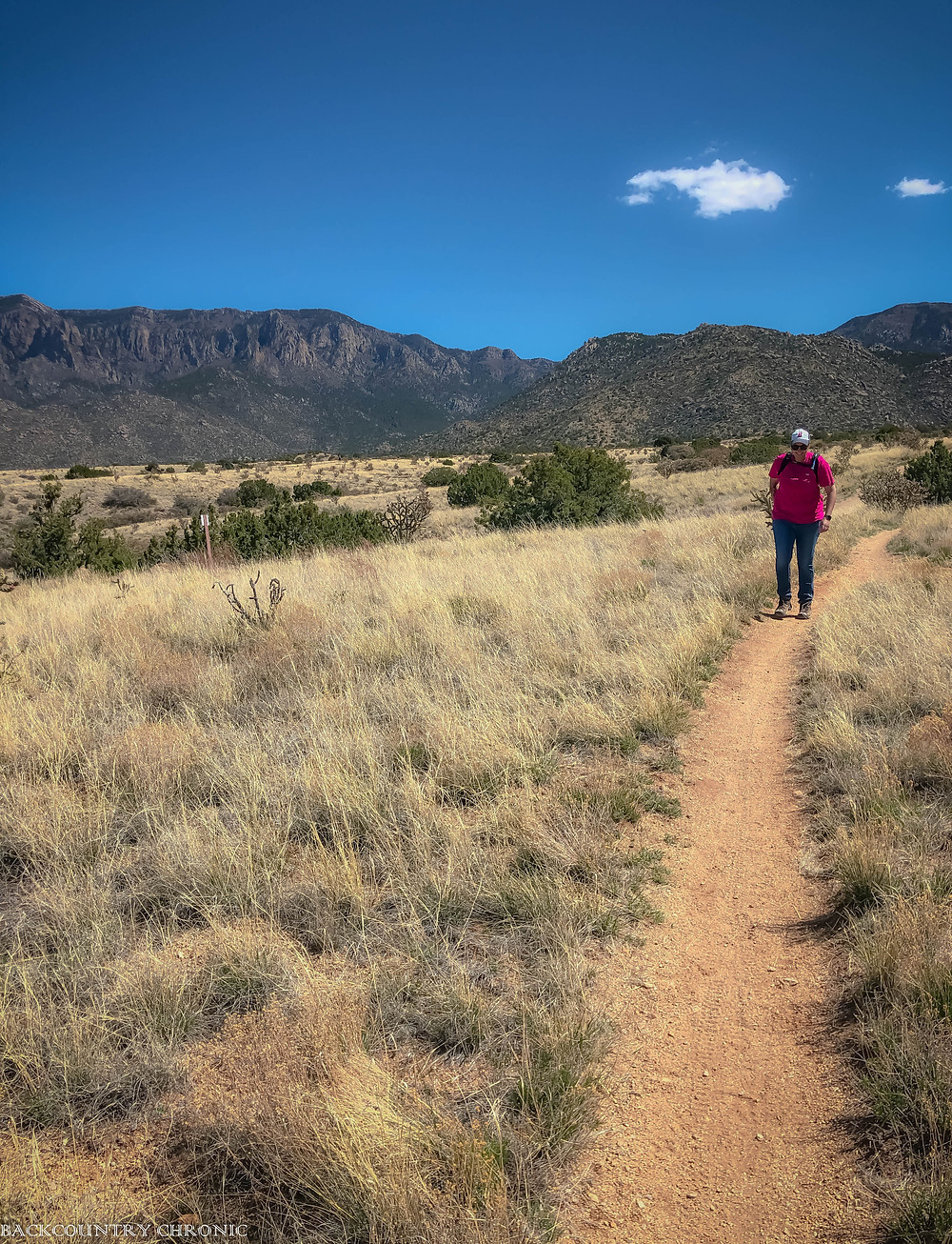 A trail in the Albuquerque foothills.