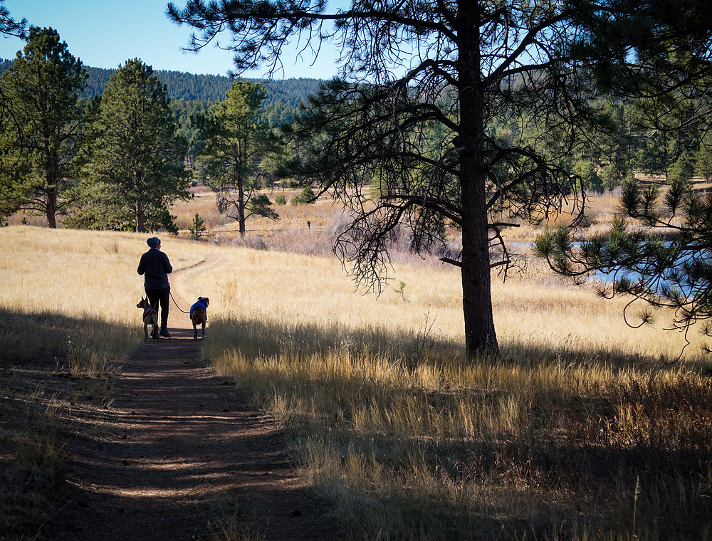 Accessible hiking trails