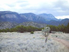 Best Albuquerque Area Day Hikes