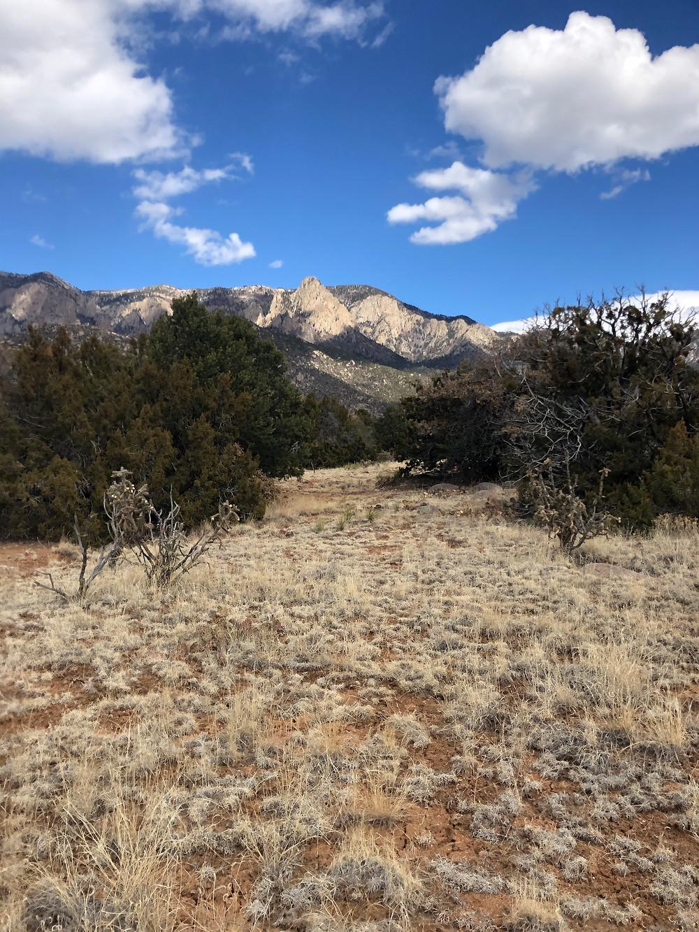 Sandia Mountains from Elena Gallegos Open Space