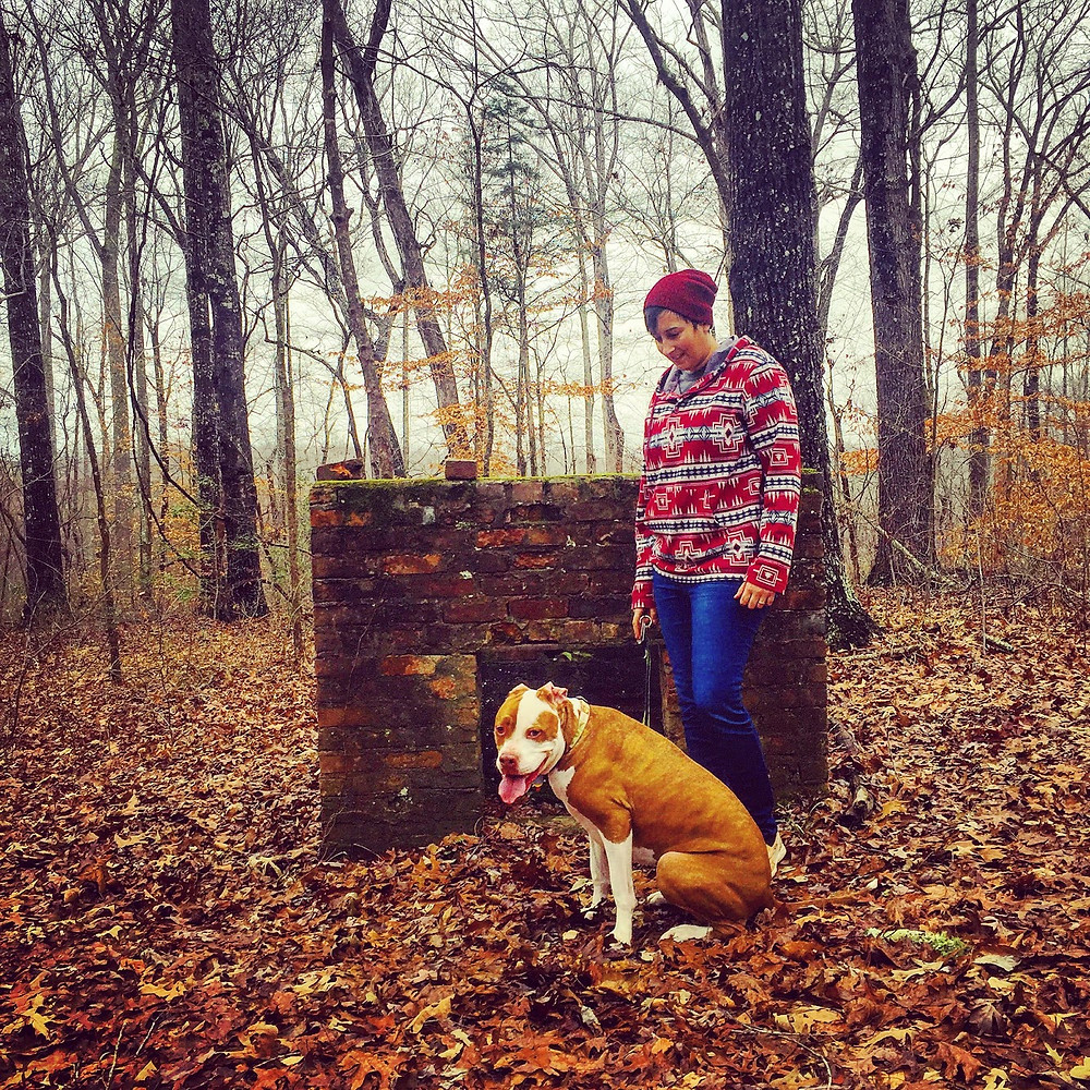 Fall hiking in Tennessee with dogs