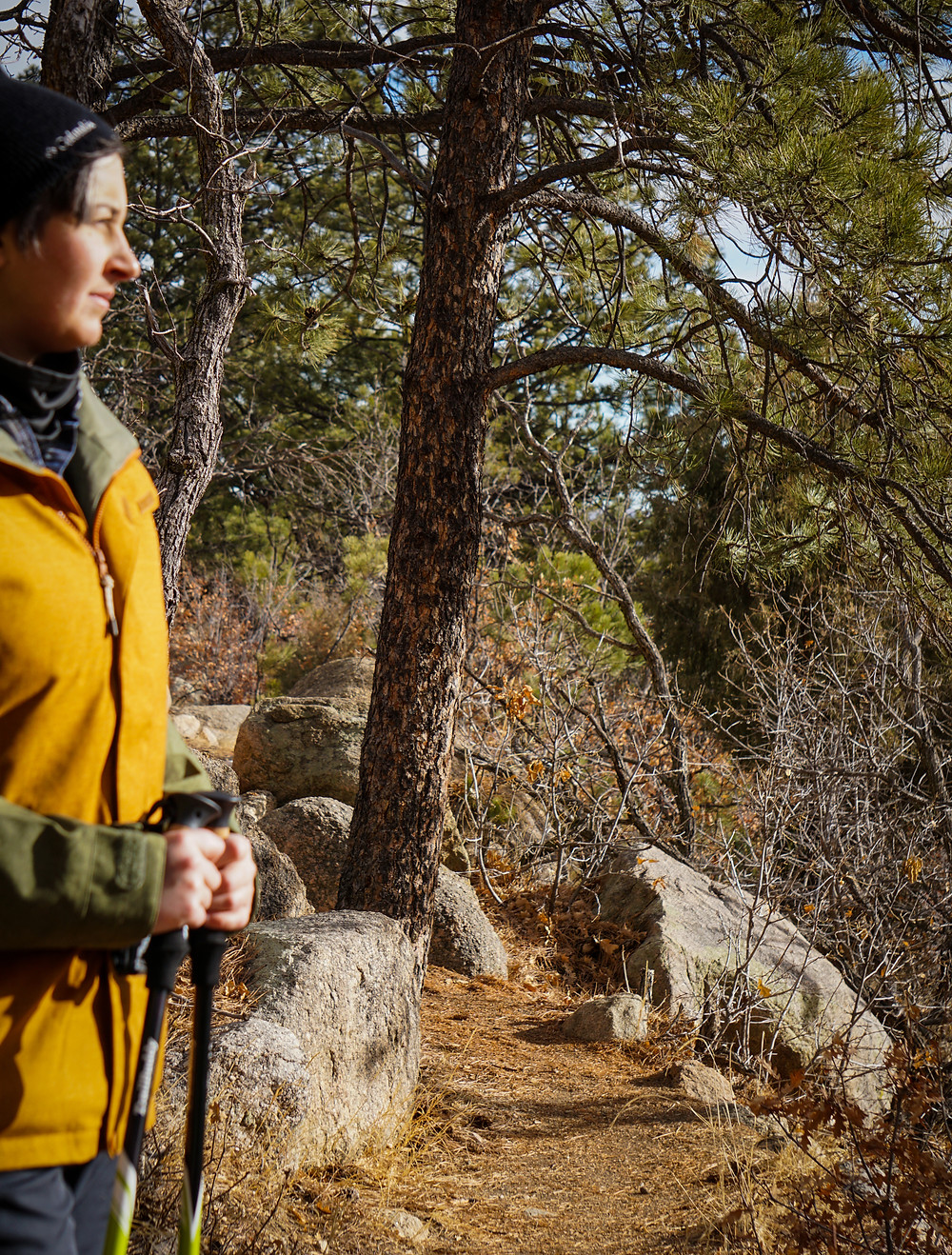 Trekking poles for hikers with disabilities