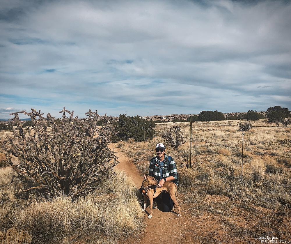 Fenceline trail in Placitas, New Mexico