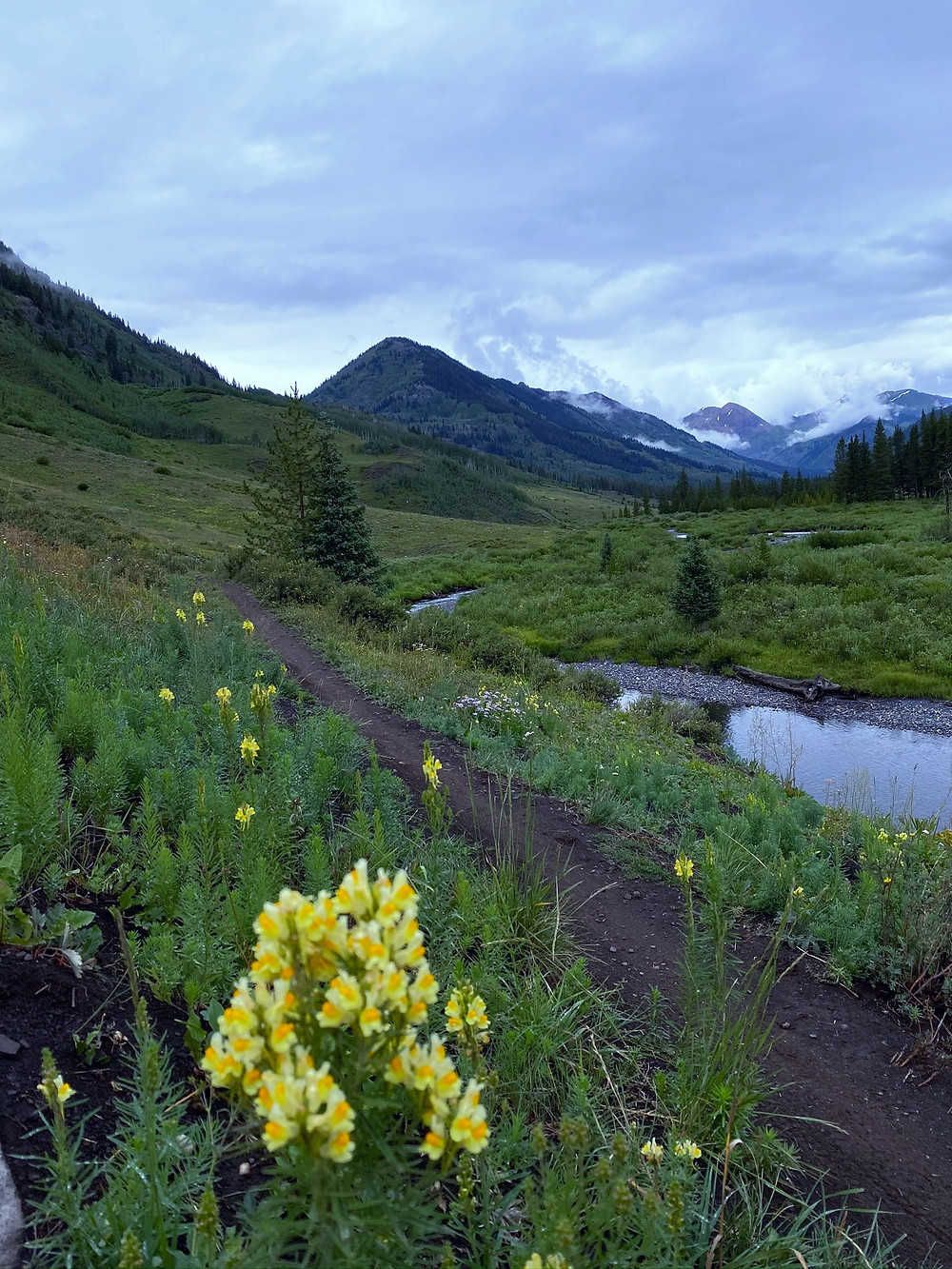 Trail following the Slate River in Crested Butte