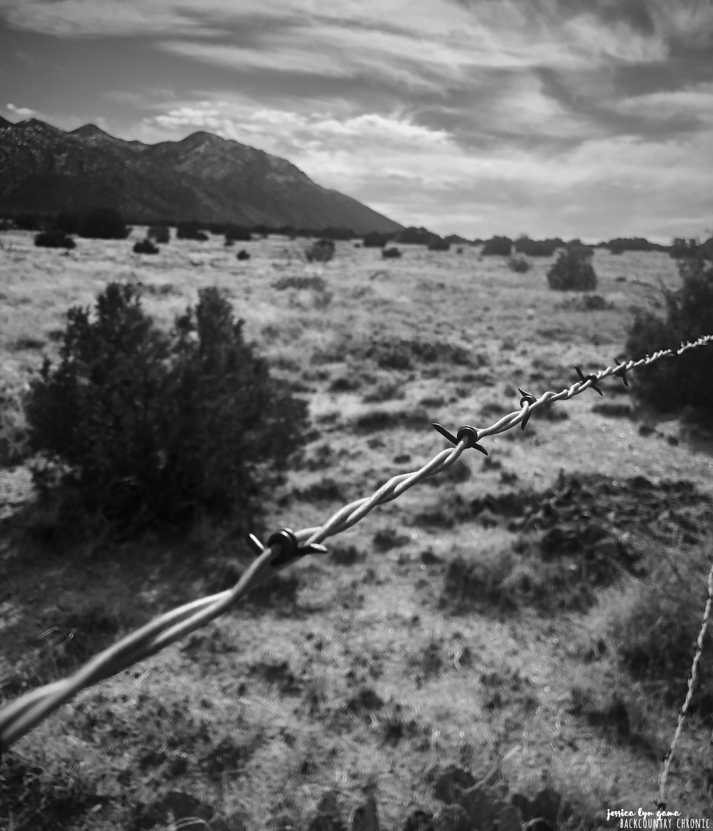 View of Sandia Mountains in black and white from Placitas, New Mexico