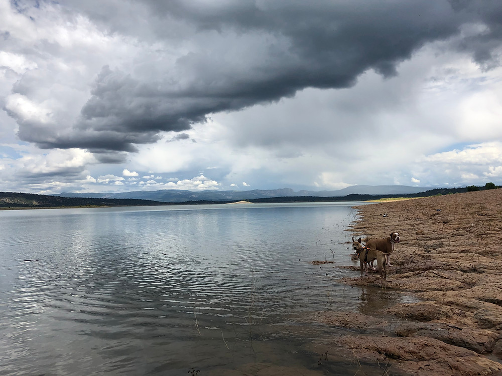 The sandstone shore of south Heron Lake in New Mexico