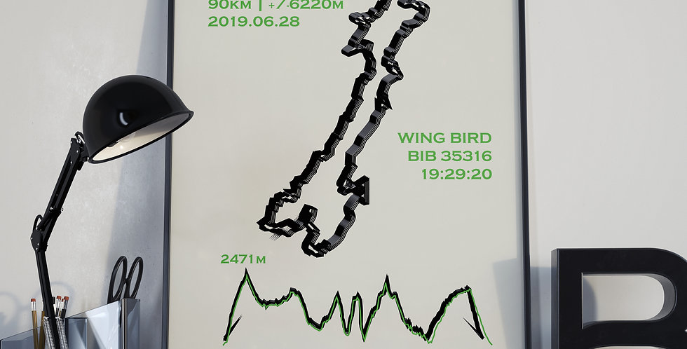 "Marathon du Mont-Blanc 2019 - ""Calli"""