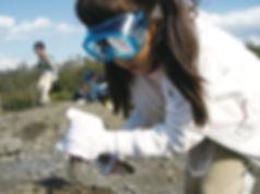 ツアー化石採集.jpg