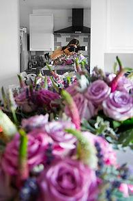 little lightbox photographer rachel jenkins