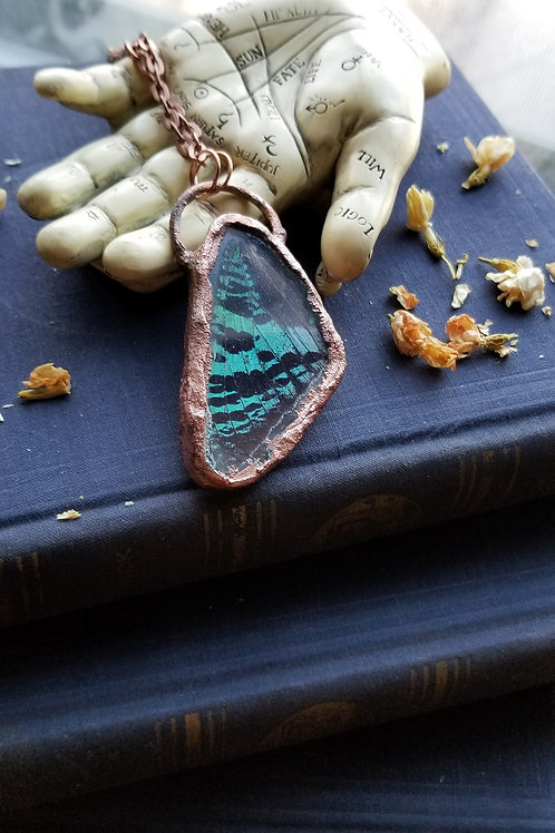 Encased Sunset Moth Pendant #1