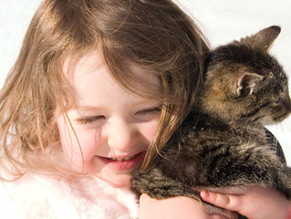Les animaux de compagnie, un gage de bien-être ?