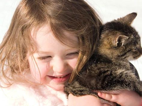 Vztah dětí a zvířat