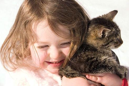 Kitty Hug