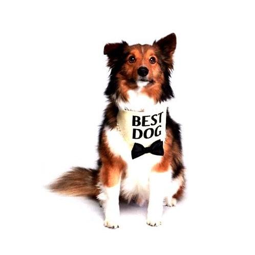 Bandana Best Dog
