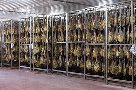 secaderos-refrigerados-4-cadena-del-frio